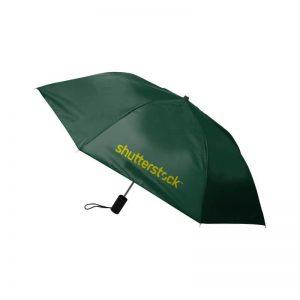 Economy Auto Open Umbrella