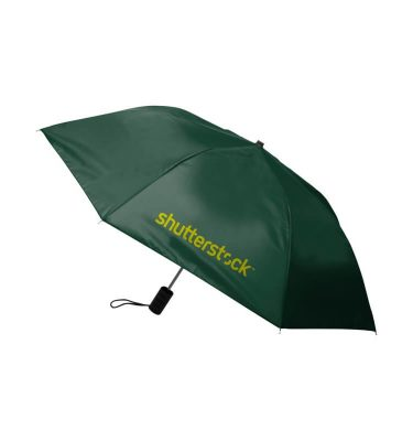 Economy Auto Open Umbrella