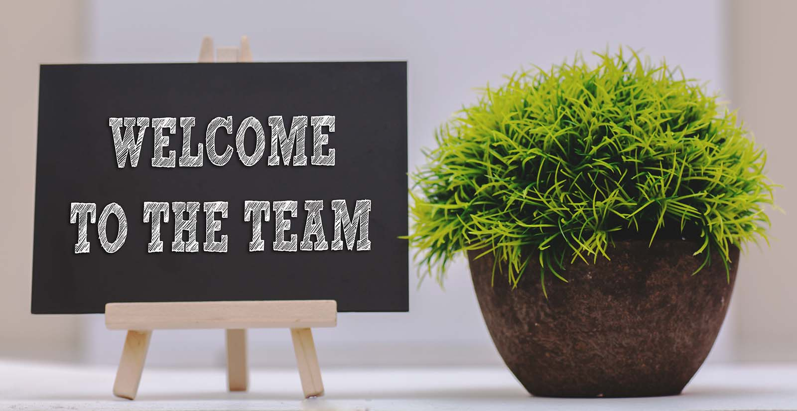 Image of a sign and plant to welcome a new employee